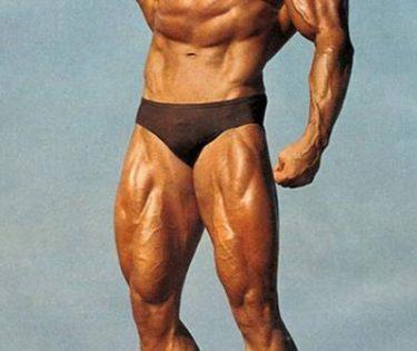 Arnold Schwarzenegger Success