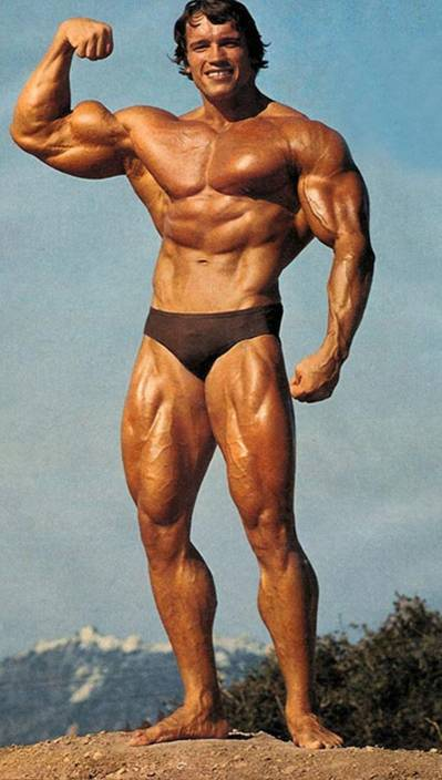 Arnold Schwarzenegger Success